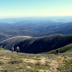 Race Preview: Bogong to Hotham
