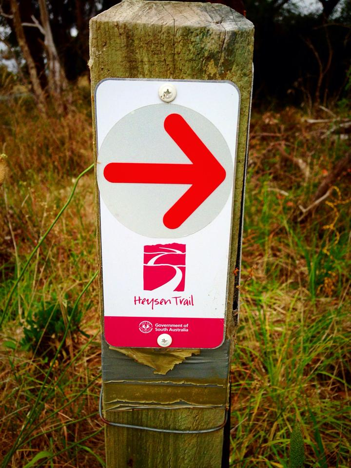 Signage can be bright red on the trails, but it's still possible for runners to get lost.