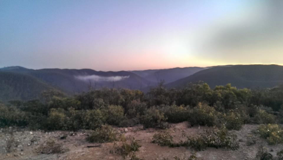 Dawn on the Berry long Run Ultra Course