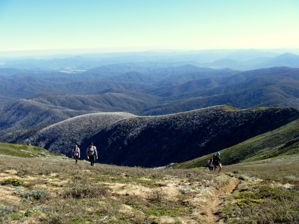 The Alpine Challenge 100 miler is arguably Australia's toughest when it comes to pure climbing and time taken
