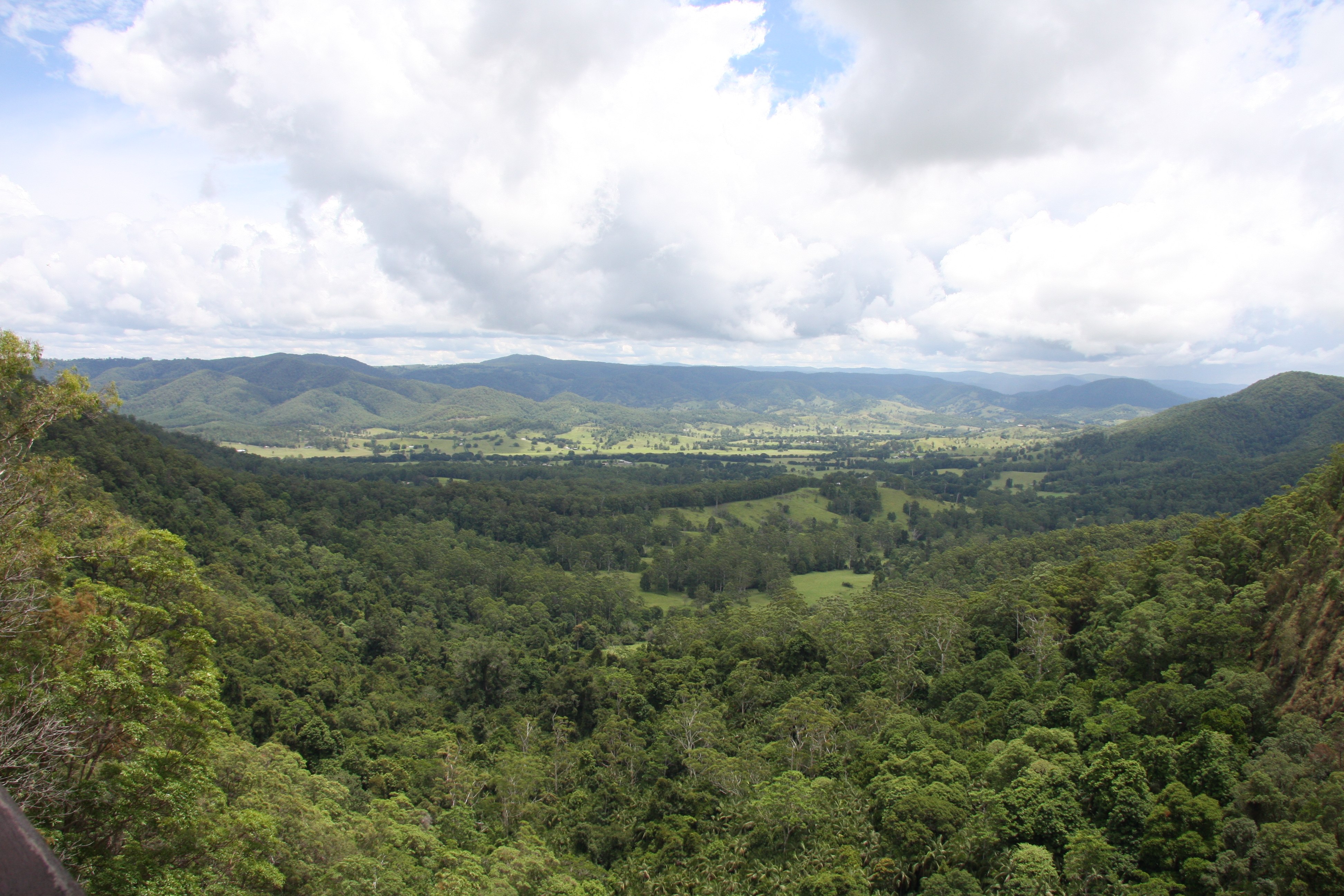 View of Obi Obi from Mapleton Falls Lookout
