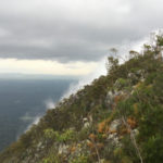 Climbing into the clouds: the Mount Cooroora Endurance Challenge